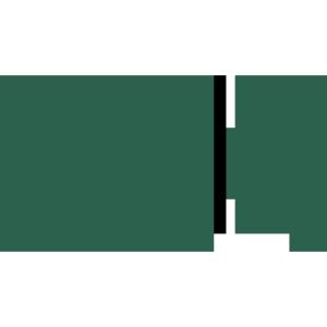 video_call green